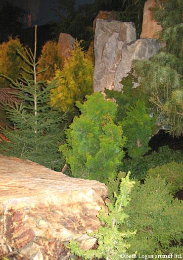 Garden-show_conifers