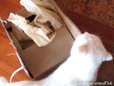 Flossie-box_2