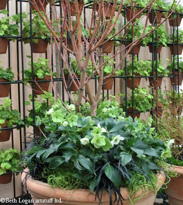 Garden-show_green5