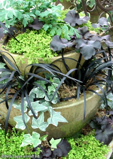 Garden-show_pot1