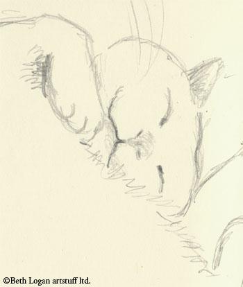 Flossie-moleskine-detail