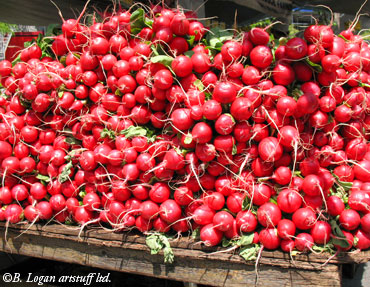 Union-sqr-radishes1