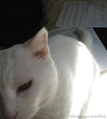 Flossie-helping-2