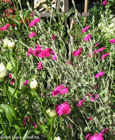 Mess-o-flowers-1