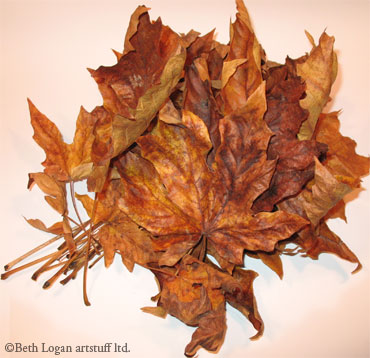 Pile-of-brown-leaves-1