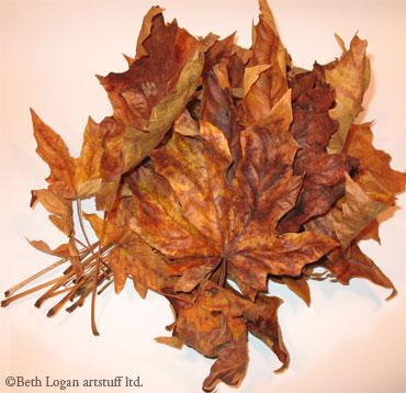 Pile-of-brown-leaves-1