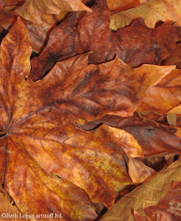Pile-of-brown-leaves-2