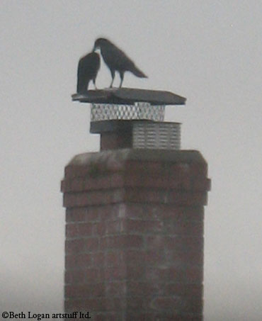 Crows-chimney-2