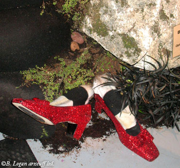 Nwf&gs-wsnla-red-shoes
