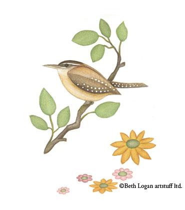 Beth-logan-wren