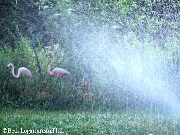 July-sprinkler-1