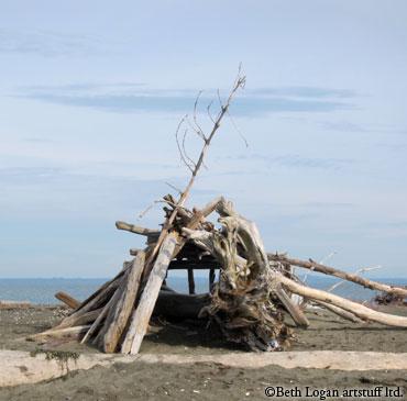 Ocean-shores-driftwood