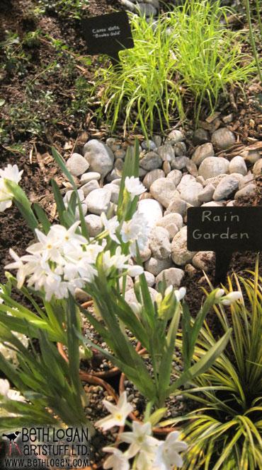ILT-rain-drainage-garden