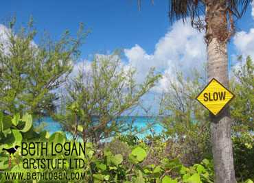 Slower-in-the-bahamas