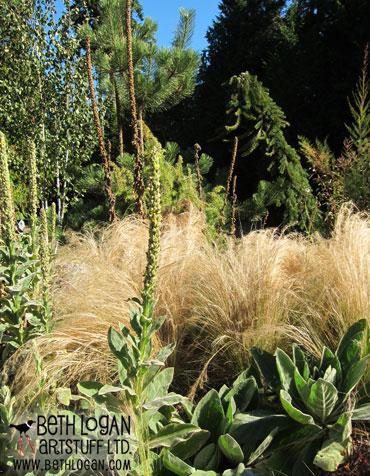October-garden-1