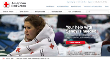 Red-cross-website