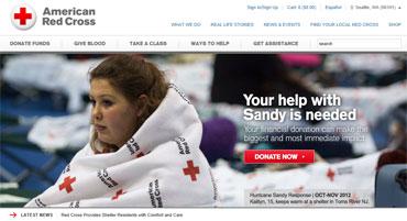 Red-cross-website