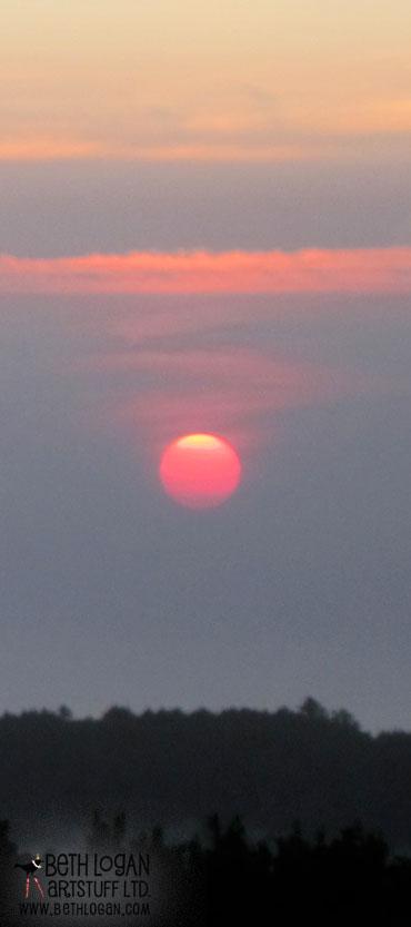 Pink-sunset-1