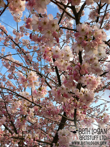 Pink-tree-1