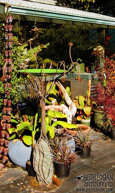 Dragonfly-nurseries-7