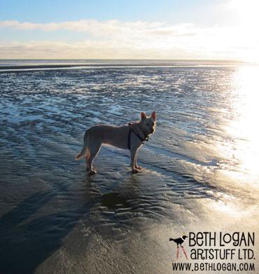 Molly-beach-1