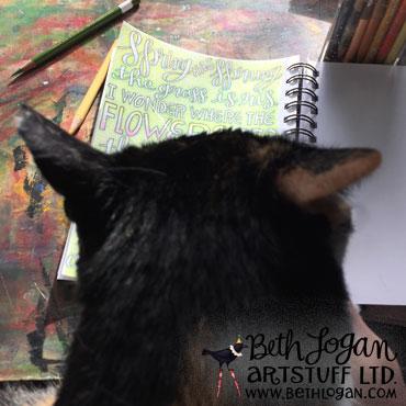 Studiocats11