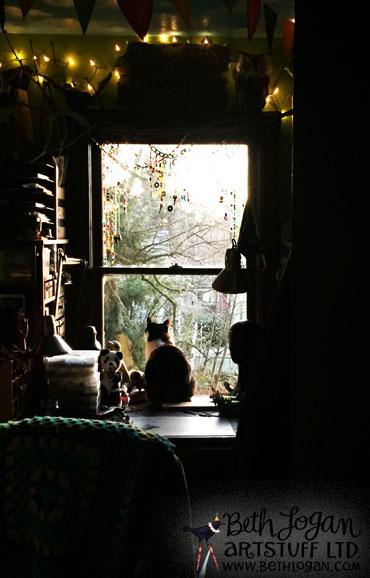 Studiocats21